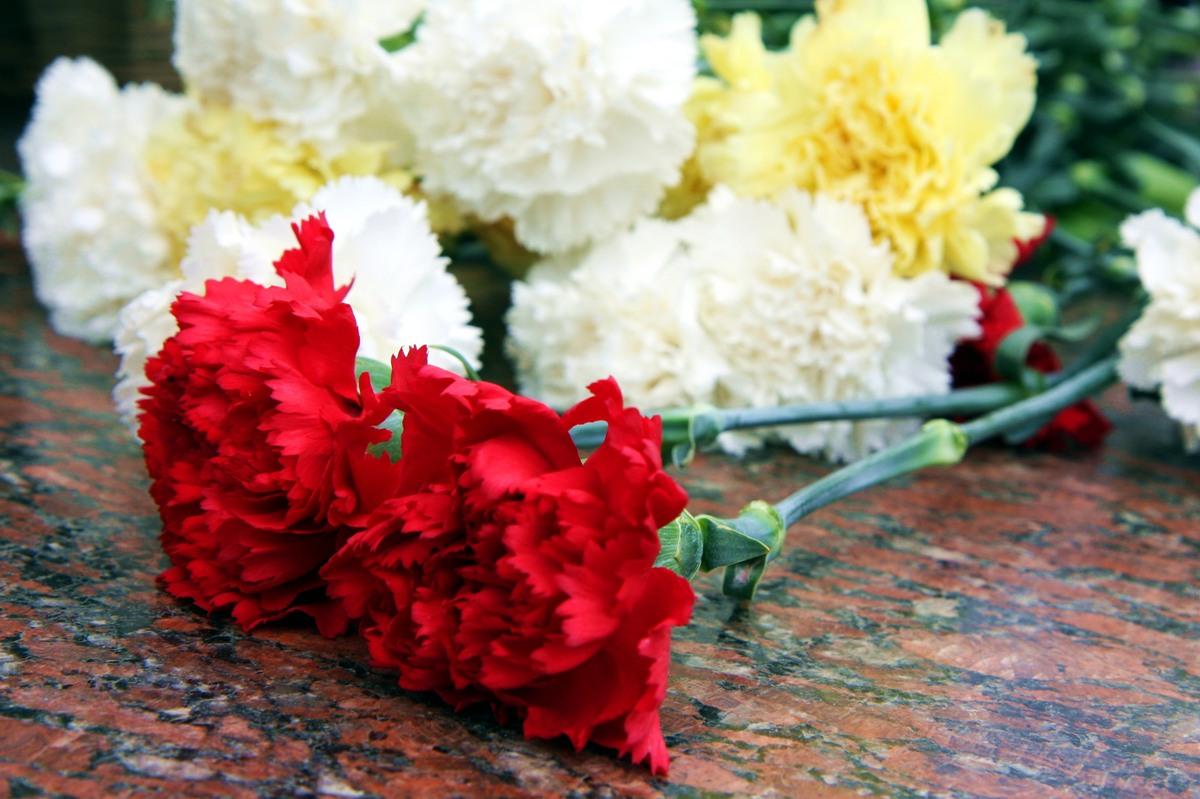 Цветы для героев картинки